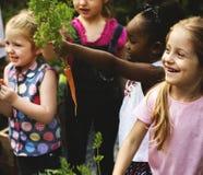 Le groupe d'enfants sont dans un jardin Photo libre de droits