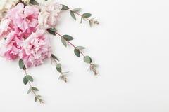 Le groupe de beaux fleurs et eucalyptus part sur la vue supérieure blanche de table style plat de configuration photos libres de droits