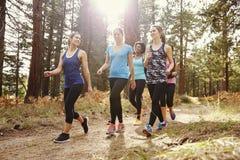 Le groupe de coureurs de femmes marchant dans une forêt parlant, se ferment  Images stock