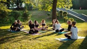 Le groupe de femmes inclinent le cou en parc le matin ensoleillé d'été sous le guidage de l'entraîneur banque de vidéos