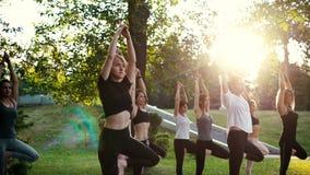 Le groupe de jeunes femmes équilibrent sur une jambe avec le bras augmenté dans la pose d'arbre banque de vidéos