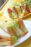 Le groupe de la coupure a grillé des sandwichs Photos libres de droits