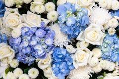 Le groupe de la fleur colorée images stock