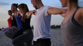 Le groupe de personnes de métis exerçant le guerrier en bonne santé de forme physique de mode de vie de yoga pose banque de vidéos