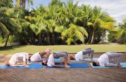 Le groupe de personnes faisant le yoga s'exerce dehors Images libres de droits