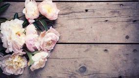 Le groupe de pivoines roses fleurit sur le fond en bois âgé Images stock