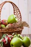 Le groupe de pommes s'approchent du panier Photographie stock libre de droits