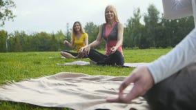 Le groupe de sportifs exécute l'exercice de respiration dehors dans un parc vert banque de vidéos