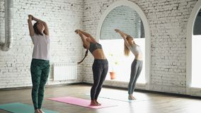 Le groupe de trois jeunes femmes pratique le yoga faisant des éléments de namaskara de Surya de salutation de Sun sur des tapis d clips vidéos