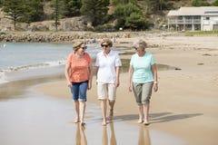Le groupe de trois supérieurs mûrissent les femmes retirées sur leur 60s ayant l'amusement appréciant ensemble la marche heureuse Photographie stock libre de droits