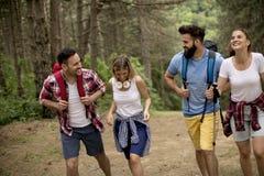 Le groupe des jeunes trimardent en montagne photographie stock