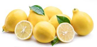 Le groupe du citron porte des fruits avec la feuille de citron sur le fond blanc Photos libres de droits