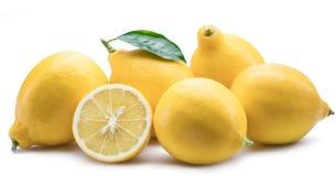 Le groupe du citron porte des fruits avec la feuille de citron sur le fond blanc Photo libre de droits