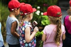 Le groupe du jardin d'enfants badine apprendre le jardinage dehors champ tri Photo libre de droits