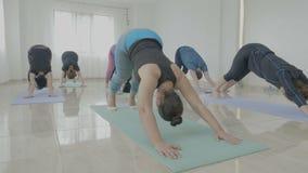 Le groupe du milieu a vieilli des femmes établissant tout en exerçant la pose de guerrier pendant une classe de yoga avec l'instr banque de vidéos