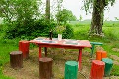 Le groupe en bois de table de jardin fleurit les tronçons colorés Image libre de droits