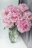 Le groupe frais de roses roses de pivoines fleurit, feuille verte dans le vase en verre sur le filon-couche de fenêtre, fond blan Photo stock