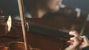 Le groupe musical exécute sur la fin d'étape du violon Fond noir de fumée banque de vidéos