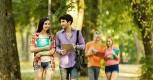 Le groupe réussi d'étudiants avec des livres en parc un jour ensoleillé Photos libres de droits