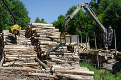 Le gru graffiano la pila di ceppi del legname al mulino del legname Fotografie Stock Libere da Diritti