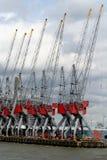 Le gru stanno funzionando nel porto di Rotterdam Fotografie Stock Libere da Diritti