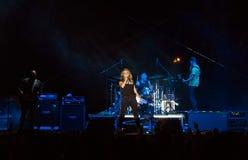 Le guano imite le concert Image stock