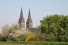 Le guglie della cattedrale Fotografie Stock