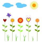 le guindineau opacifie le soleil de fleurs Photographie stock