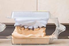 Le gypse dentaire de bâti modèle le plâtre photographie stock