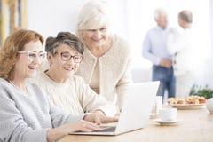 Le höga kvinnor som använder bärbara datorn royaltyfria foton