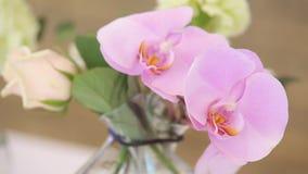 Le hall de restaurant est décoré des vases avec des orchidées Changement dynamique de foyer clips vidéos
