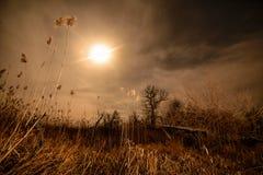 Le halo de pleine lune rayonne - le paysage de pleine lune de nuit Photo stock