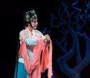 """Le harem impérial de concubine ou l'opéra de sérail-Jiangxi """"Red le  de pearl†Image libre de droits"""