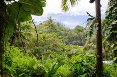 Le Hawai 1 Fotografia Stock