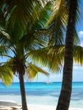 Le Hawai Immagini Stock