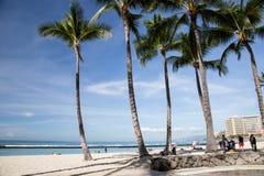 Le Hawai - Oahu Fotografie Stock Libere da Diritti