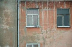 Le hibou se repose sur le rebord de fenêtre Photos libres de droits