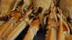 Le homard de Norvège de mouvement lent cuit pour sert un restaurant de wagon-restaurant de fruits de mer de plat banque de vidéos
