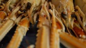 Le homard de Norvège de mouvement lent cuit pour sert un restaurant de wagon-restaurant de fruits de mer de plat clips vidéos