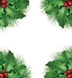 Le houx avec le pin s'embranche trame saisonnière de cadre Photos libres de droits
