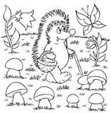 Le hérisson recueille des champignons de couche Photo stock