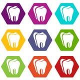 Le icone del dente canino hanno fissato il vettore 9 royalty illustrazione gratis