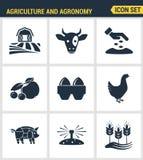Le icone hanno fissato la qualità premio dell'icona di agronomia e dell'agricoltura che coltiva l'affare d'alimentazione Raccolta Immagine Stock