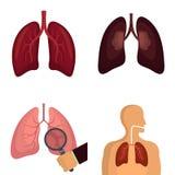 Le icone respiranti umane dell'organo del polmone hanno fissato il vettore isolato illustrazione vettoriale