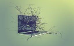 Le icone sociali di media hanno messo sulla radice che cresce dal computer portatile Fotografie Stock Libere da Diritti