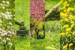 Le immagini del collage funzionano in giardino ed in prato inglese con il regolatore della benzina Immagine Stock Libera da Diritti