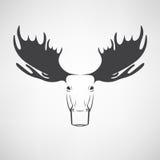 Le immagini di vettore dei cervi delle alci si dirigono su un fondo bianco Fotografia Stock