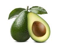 Le intere foglie dell'avocado hanno tagliato la metà 2 isolate su fondo bianco Fotografie Stock