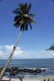 Le isole di salvezza, Guyana francese Immagine Stock Libera da Diritti