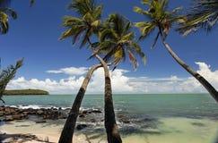 Le isole di salvezza, Guyana francese Fotografie Stock